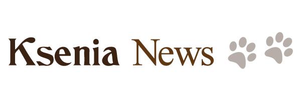 Ksenia News banner